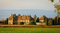 Chateau de Ripaille (4)